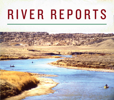 River Reports