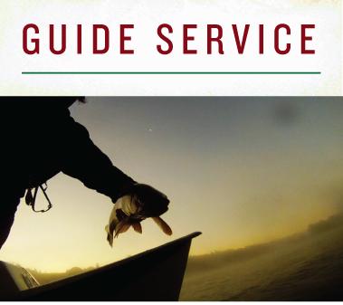 Guide Service